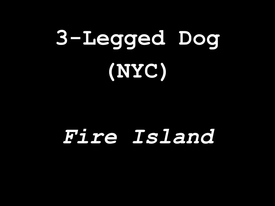3-Legged Dog (NYC) Fire Island
