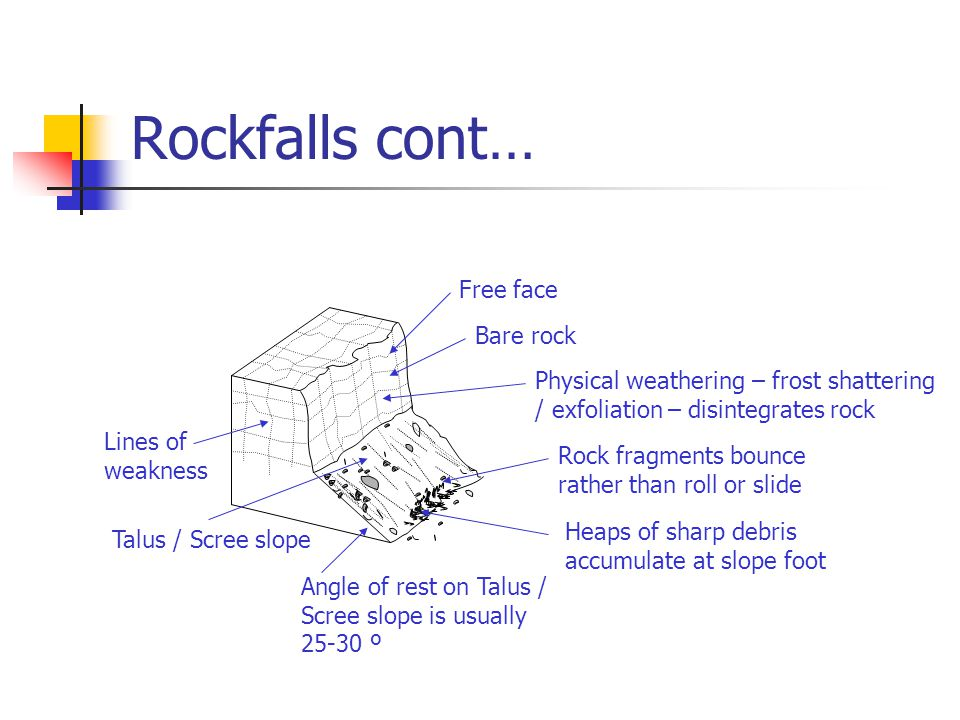 Rockfalls cont… Lines of weakness Talus / Scree slope Angle of rest on Talus / Scree slope is usually 25-30 º Heaps of sharp debris accumulate at slope foot Rock fragments bounce rather than roll or slide Physical weathering – frost shattering / exfoliation – disintegrates rock Bare rock Free face