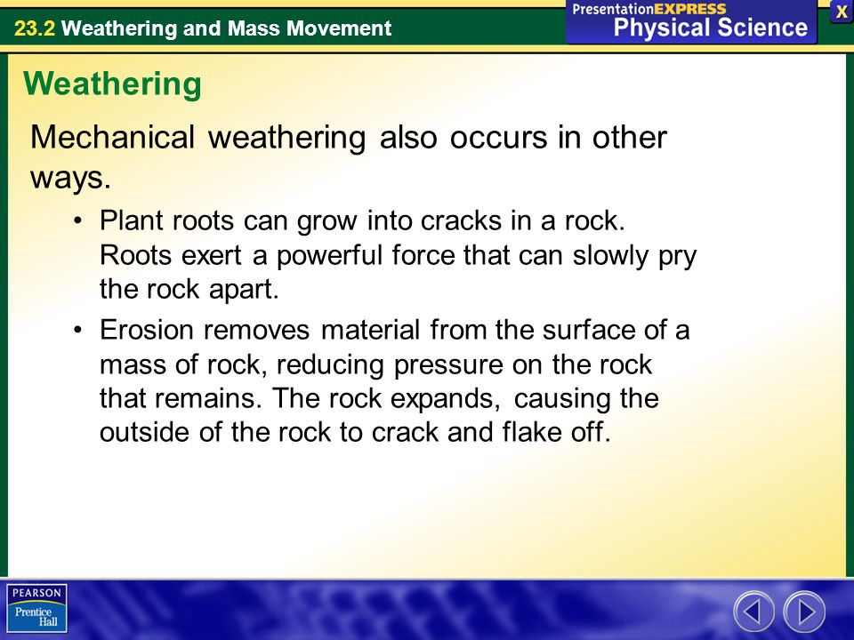 23.2 Weathering and Mass Movement Mechanical weathering also occurs in other ways. Plant roots can grow into cracks in a rock. Roots exert a powerful