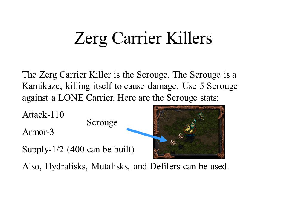 Zerg Carrier Killers The Zerg Carrier Killer is the Scrouge. The Scrouge is a Kamikaze, killing itself to cause damage. Use 5 Scrouge against a LONE C