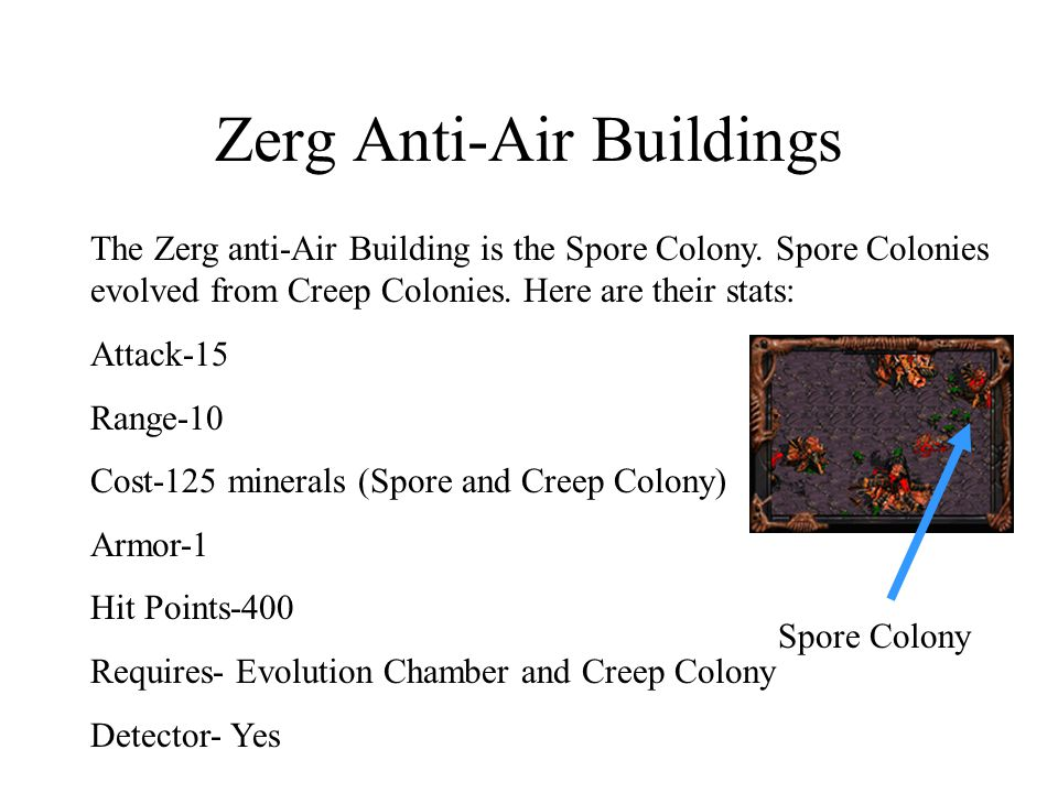 Zerg Anti-Air Buildings The Zerg anti-Air Building is the Spore Colony. Spore Colonies evolved from Creep Colonies. Here are their stats: Attack-15 Ra