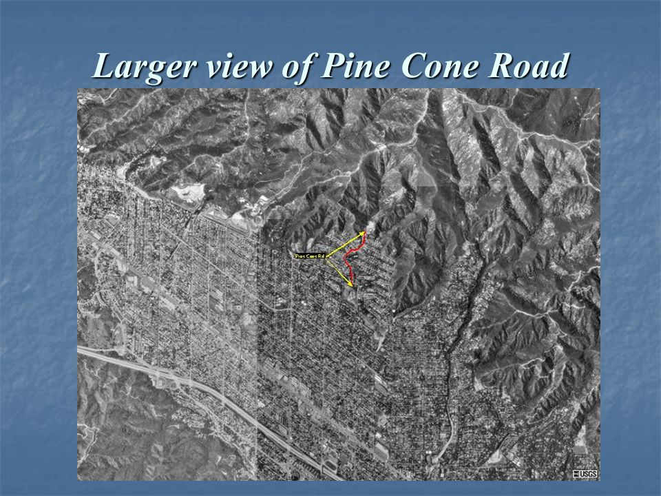 Larger view of Pine Cone Road