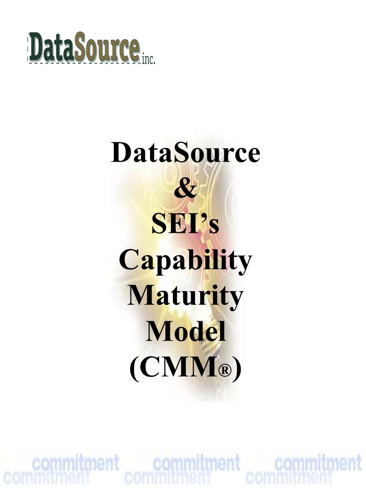 DataSource & SEI's Capability Maturity Model (CMM ® )