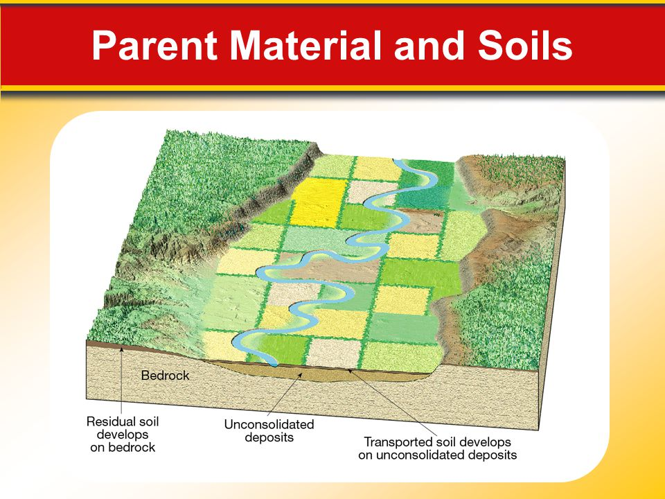 Parent Material and Soils