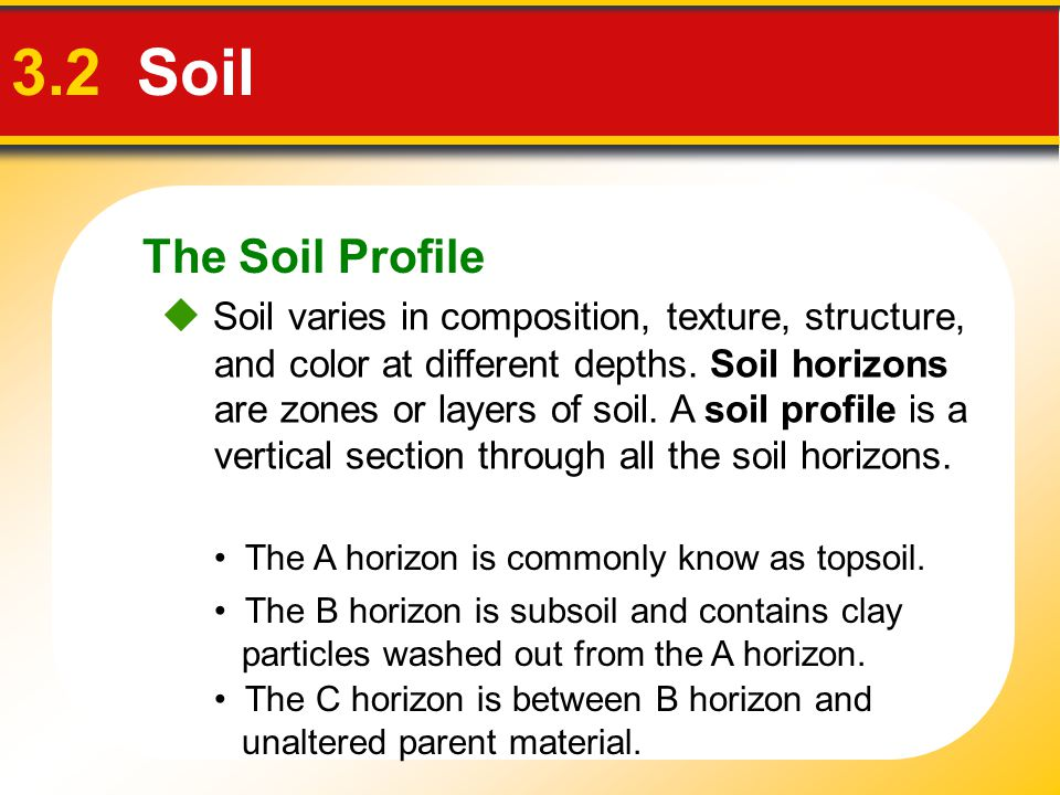 The Soil Profile 3.2 Soil  Soil varies in composition, texture, structure, and color at different depths. Soil horizons are zones or layers of soil.
