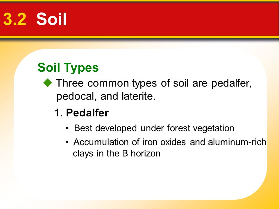 Soil Types 3.2 Soil  Three common types of soil are pedalfer, pedocal, and laterite. 1. Pedalfer Best developed under forest vegetation Accumulation
