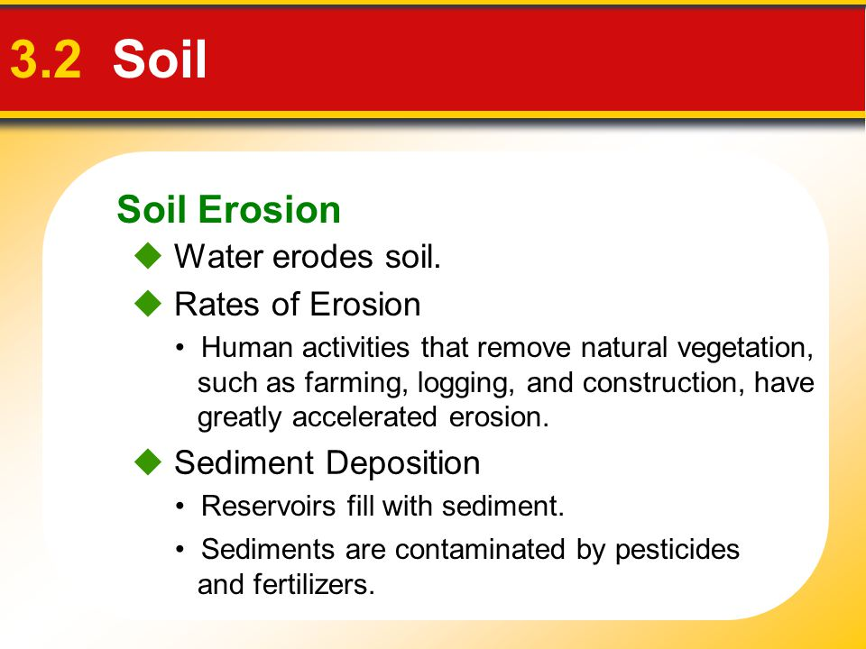 Soil Erosion 3.2 Soil Human activities that remove natural vegetation, such as farming, logging, and construction, have greatly accelerated erosion. 