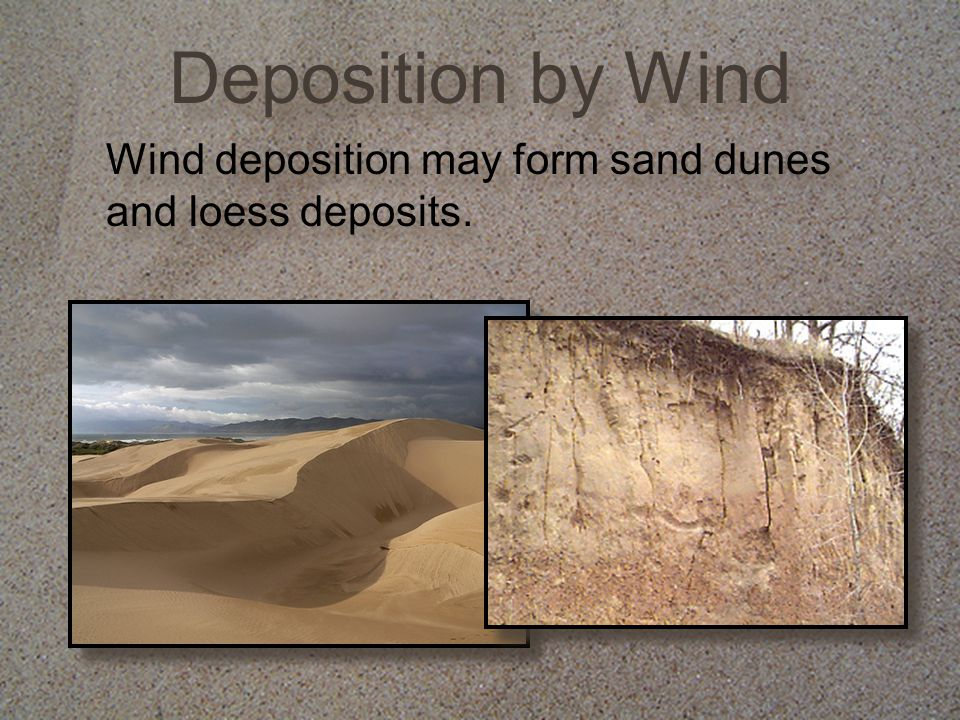 Deposition by Wind Wind deposition may form sand dunes and loess deposits.