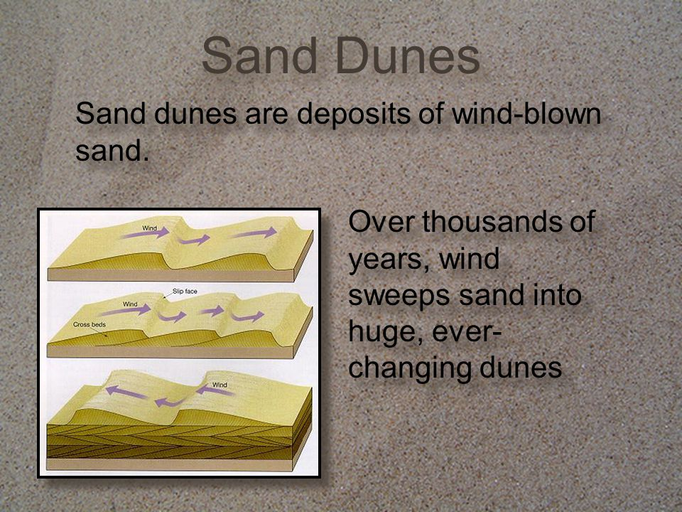 Sand Dunes Sand dunes are deposits of wind-blown sand. Over thousands of years, wind sweeps sand into huge, ever- changing dunes