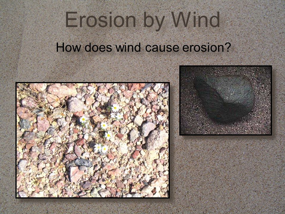 Erosion by Wind How does wind cause erosion?