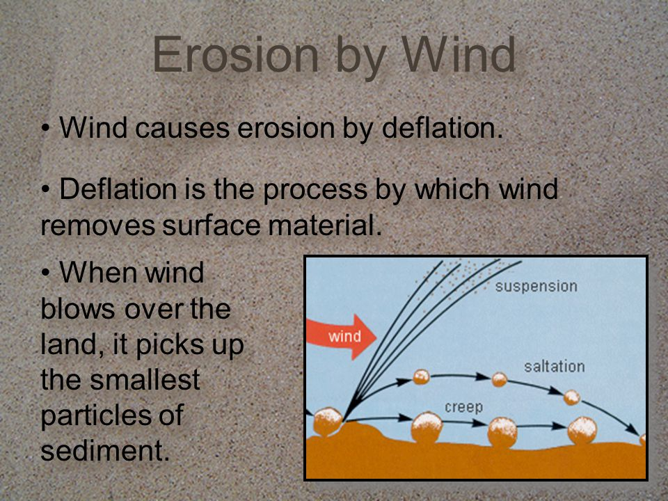 Check Understanding What are two shapes that sand dunes can form.