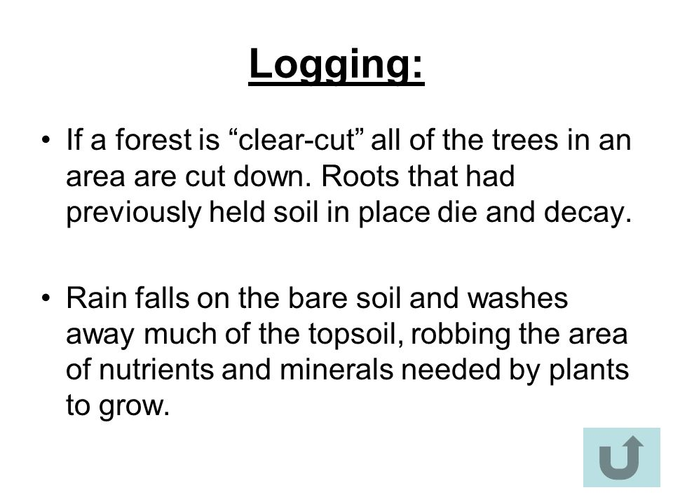 """Logging: If a forest is """"clear-cut"""" all of the trees in an area are cut down. Roots that had previously held soil in place die and decay. Rain falls o"""