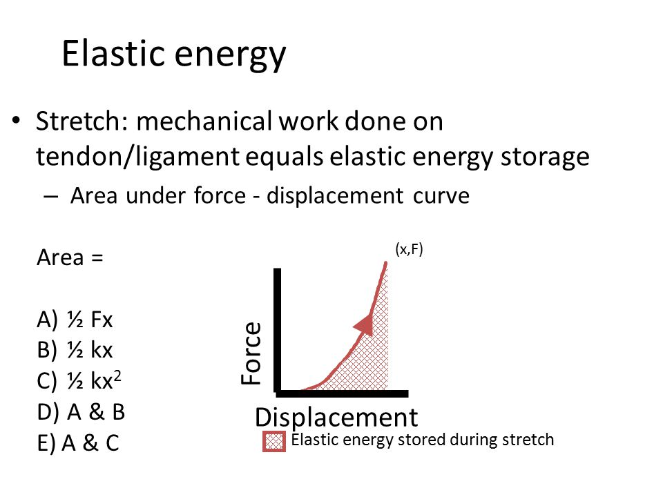 Elastic energy Stretch: mechanical work done on tendon/ligament equals elastic energy storage – Area under force - displacement curve Force Displacement Elastic energy stored during stretch Area = A) ½ Fx B) ½ kx C) ½ kx 2 D) A & B E)A & C (x,F)