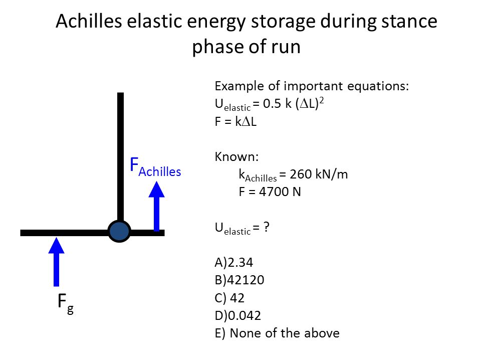 Achilles elastic energy storage during stance phase of run FgFg Example of important equations: U elastic = 0.5 k (  L) 2 F = k  L Known: k Achilles