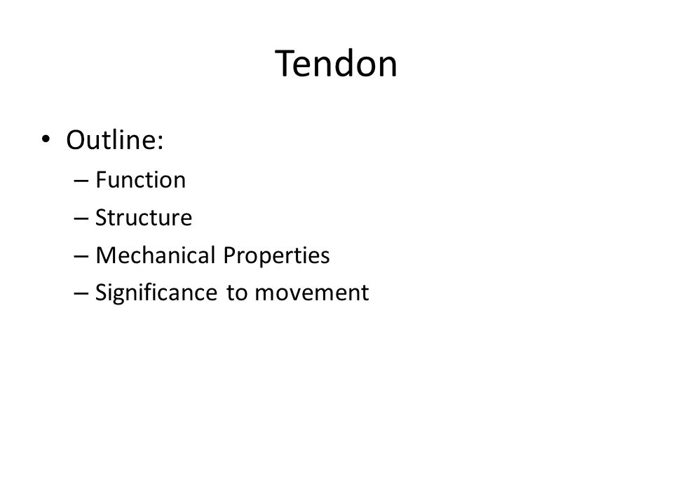 Outline: – Function – Structure – Mechanical Properties – Significance to movement