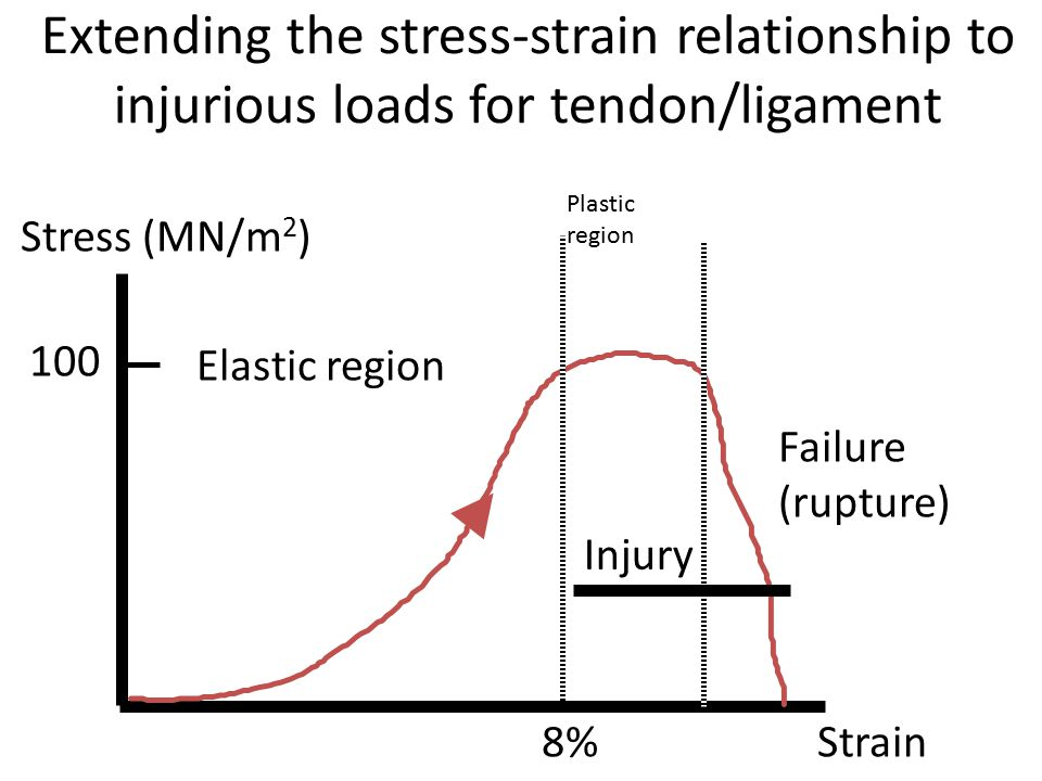 Extending the stress-strain relationship to injurious loads for tendon/ligament Injury Failure (rupture) Stress (MN/m 2 ) Strain 100 8% Elastic region
