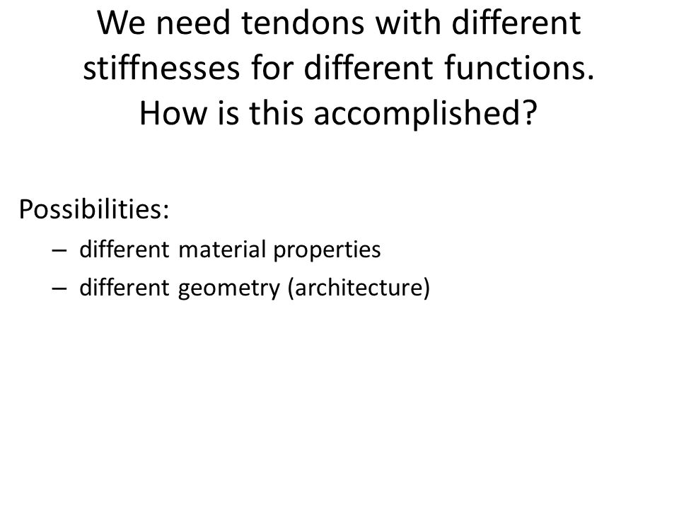 We need tendons with different stiffnesses for different functions. How is this accomplished? Possibilities: – different material properties – differe