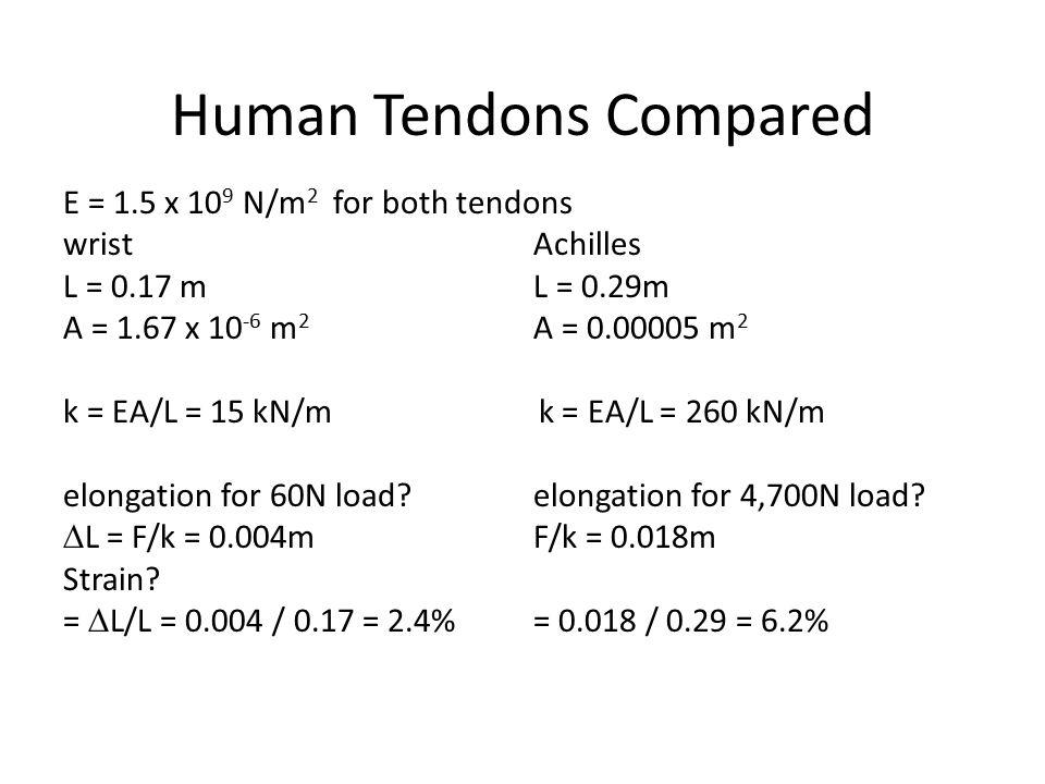 E = 1.5 x 10 9 N/m 2 for both tendons wristAchilles L = 0.17 mL = 0.29m A = 1.67 x 10 -6 m 2 A = 0.00005 m 2 k = EA/L = 15 kN/m k = EA/L = 260 kN/m elongation for 60N load.