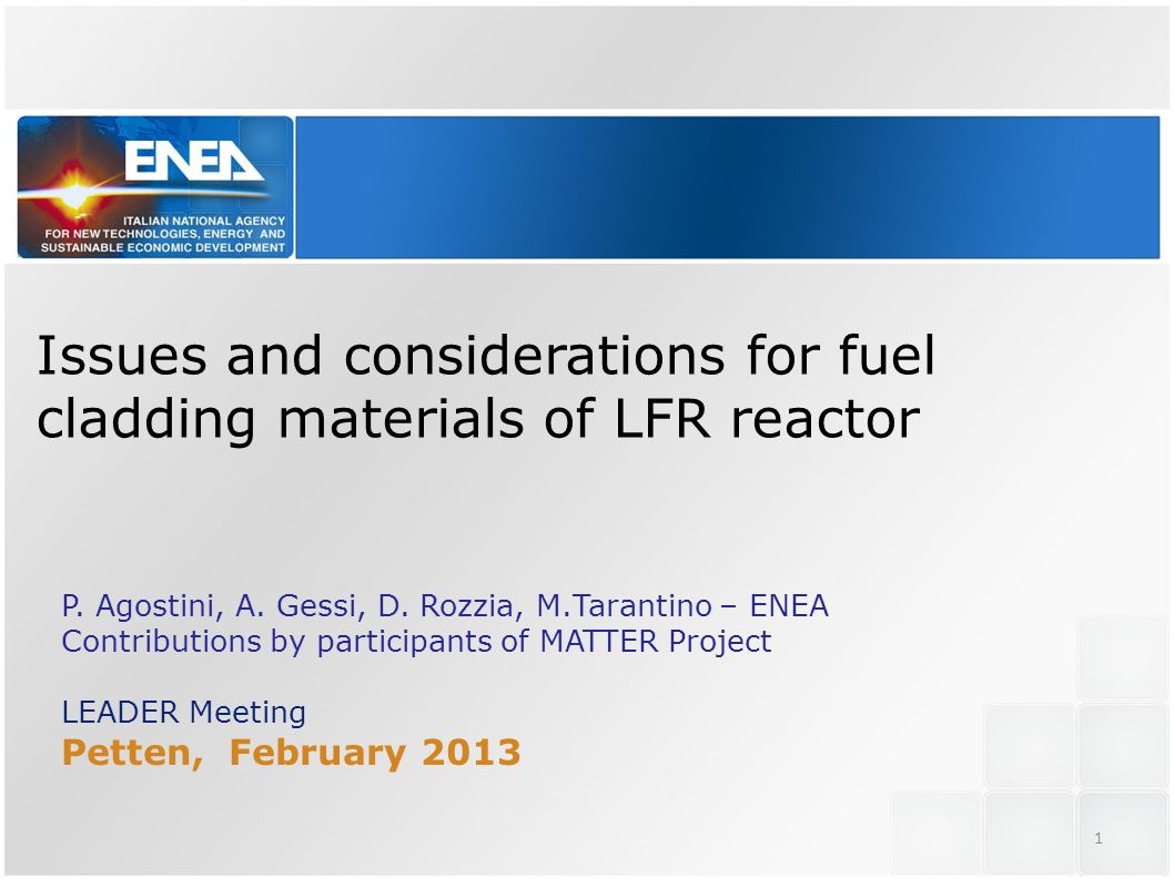 Issues and considerations for fuel cladding materials of LFR reactor P.