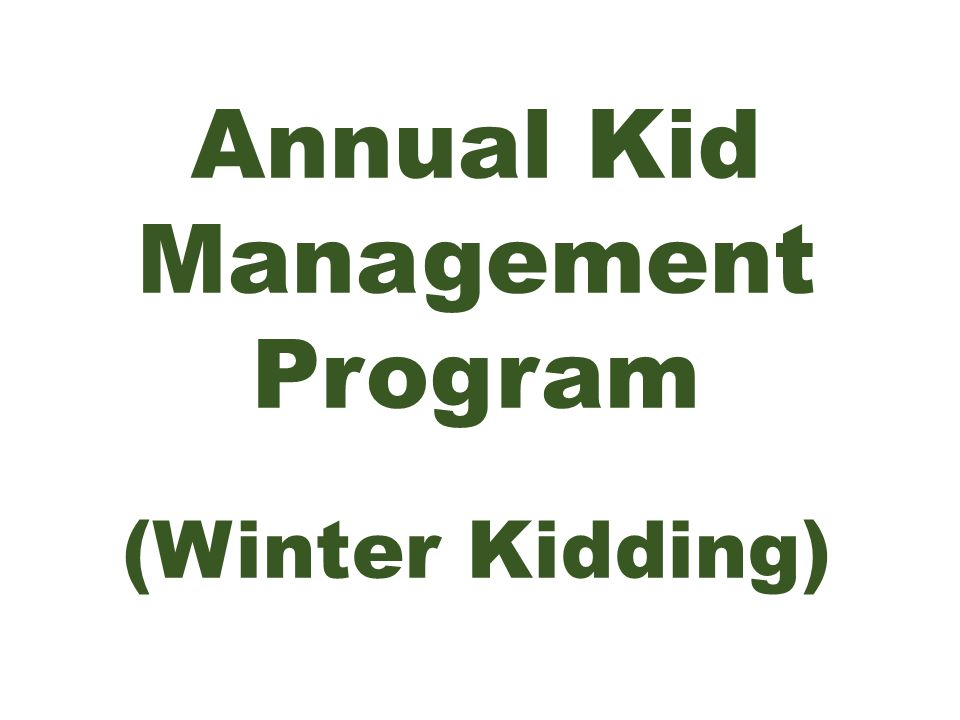 Annual Kid Management Program (Winter Kidding)