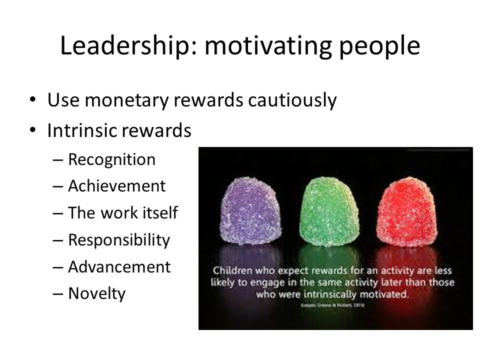 Leadership: motivating people Use monetary rewards cautiously Intrinsic rewards – Recognition – Achievement – The work itself – Responsibility – Advancement – Novelty