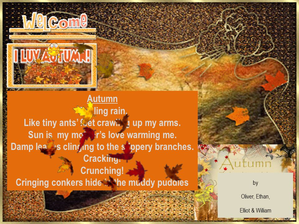 Autumn Tickling rain, Like tiny ants' feet crawling up my arms. Sun is my mother's love warming me. Damp leaves clinging to the slippery branches. Cra
