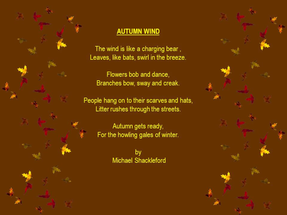 AUTUMN WIND The wind is like a charging bear, Leaves, like bats, swirl in the breeze. Flowers bob and dance, Branches bow, sway and creak. People hang