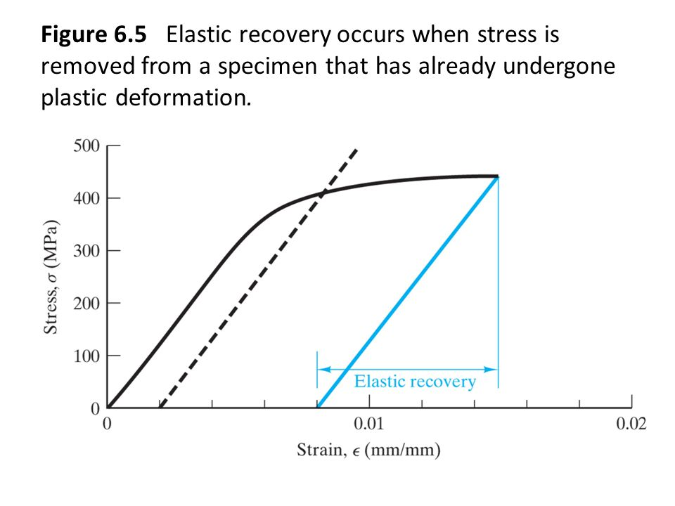 Figure 6.5 Elastic recovery occurs when stress is removed from a specimen that has already undergone plastic deformation.