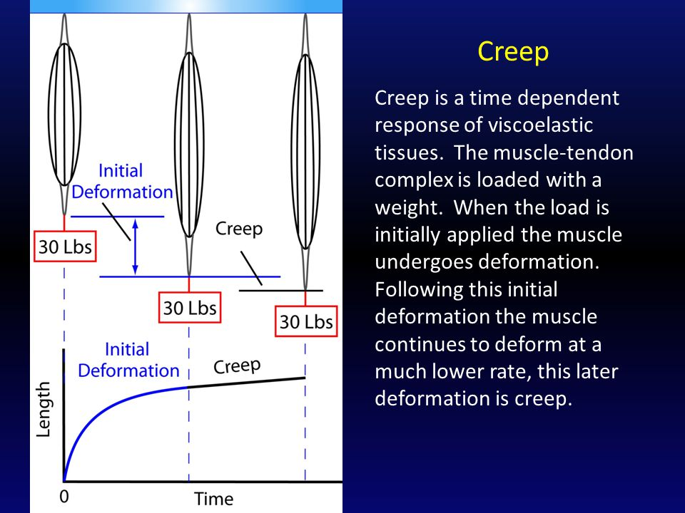 Creep Creep is a time dependent response of viscoelastic tissues.
