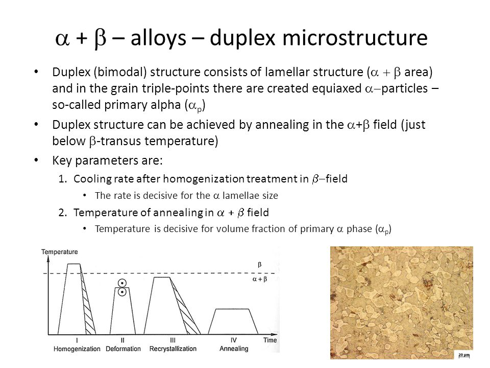  +  – alloys – globular microstructure Globular (equiaxed) microstructure consists of equiaxed particles of primary  phase (  p ),  phase is along the grain boundaries Equiaxed structure can be achieved similarly to duplex structure – Lower cooling rate after recrystallization – Lower recrystallization annealing temperature Small grains might be achieved
