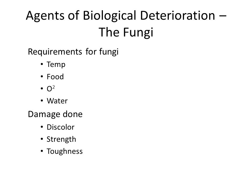 Agents of Biological Deterioration – The Fungi Requirements for fungi Temp Food O 2 Water Damage done Discolor Strength Toughness