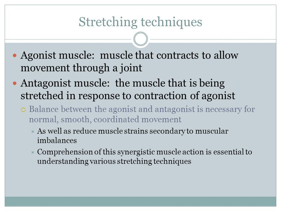 Stretching techniques Agonist muscle: muscle that contracts to allow movement through a joint Antagonist muscle: the muscle that is being stretched in