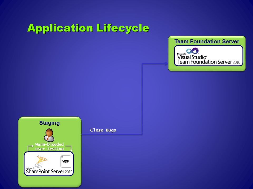 Application Lifecycle Team Foundation Server Staging Warm-blooded user testing Close Bugs WSP