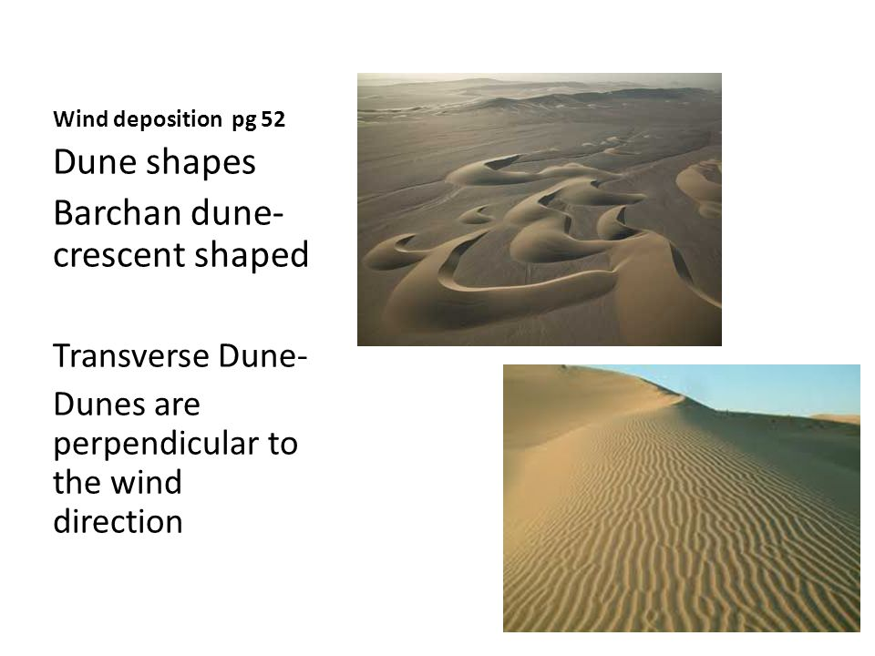 Wind deposition pg 52 Dune shapes Barchan dune- crescent shaped Transverse Dune- Dunes are perpendicular to the wind direction