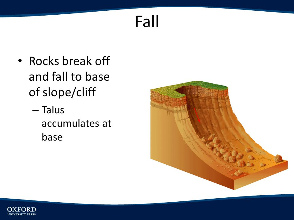 Fall Rocks break off and fall to base of slope/cliff – Talus accumulates at base