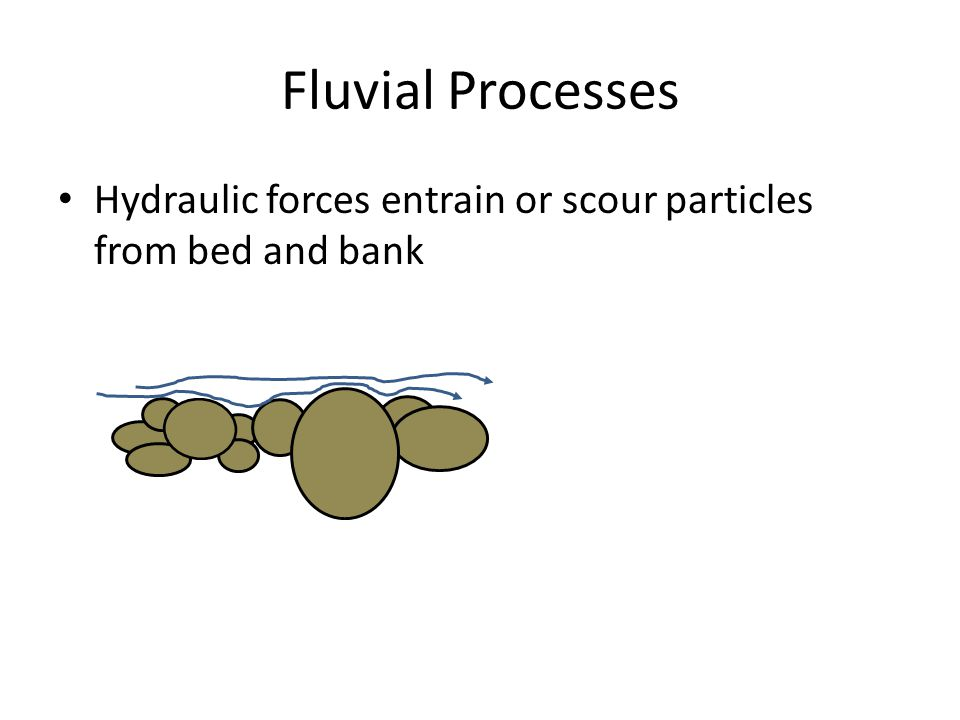 Fluvial Processes Hydraulic forces entrain or scour particles from bed and bank