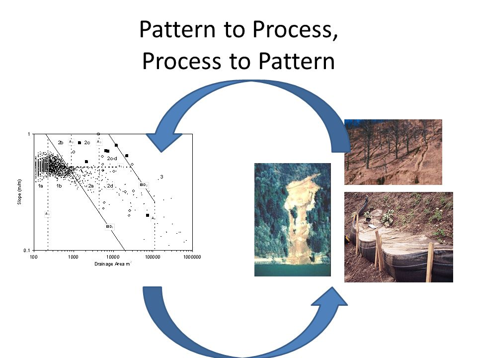 Pattern to Process, Process to Pattern