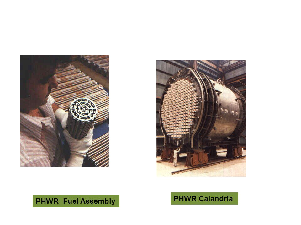 PHWR Fuel Assembly PHWR Calandria