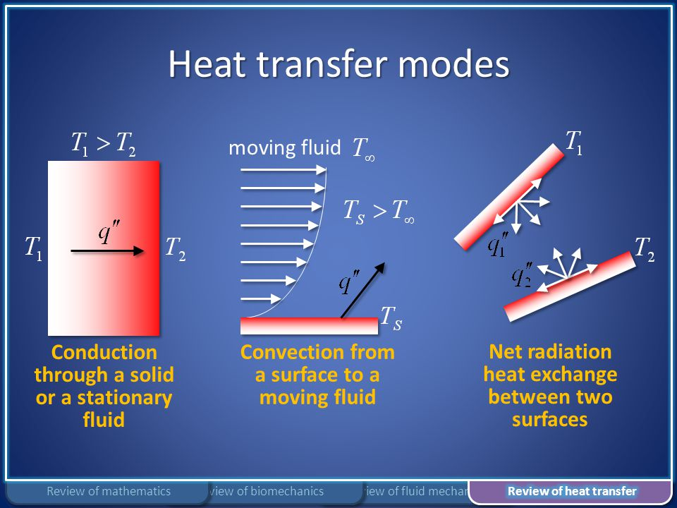 Heat transfer modes Review of fluid mechanicsReview of biomechanicsReview of mathematics Conduction through a solid or a stationary fluid moving fluid