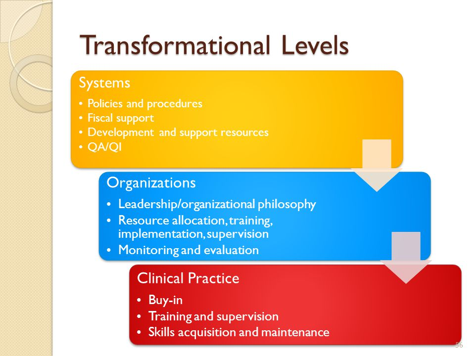 Transformational Levels Systems Policies and procedures Fiscal support Development and support resources QA/QI Organizations Leadership/organizational