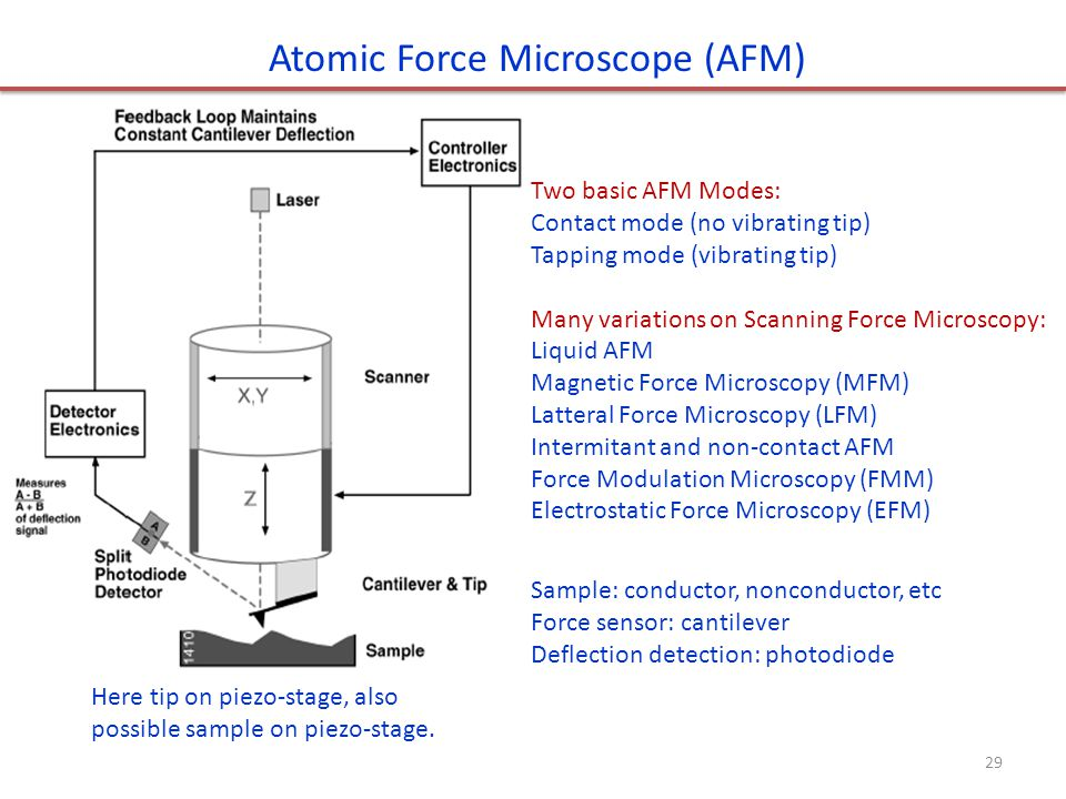 Atomic Force Microscope (AFM) Sample: conductor, nonconductor, etc Force sensor: cantilever Deflection detection: photodiode Two basic AFM Modes: Cont
