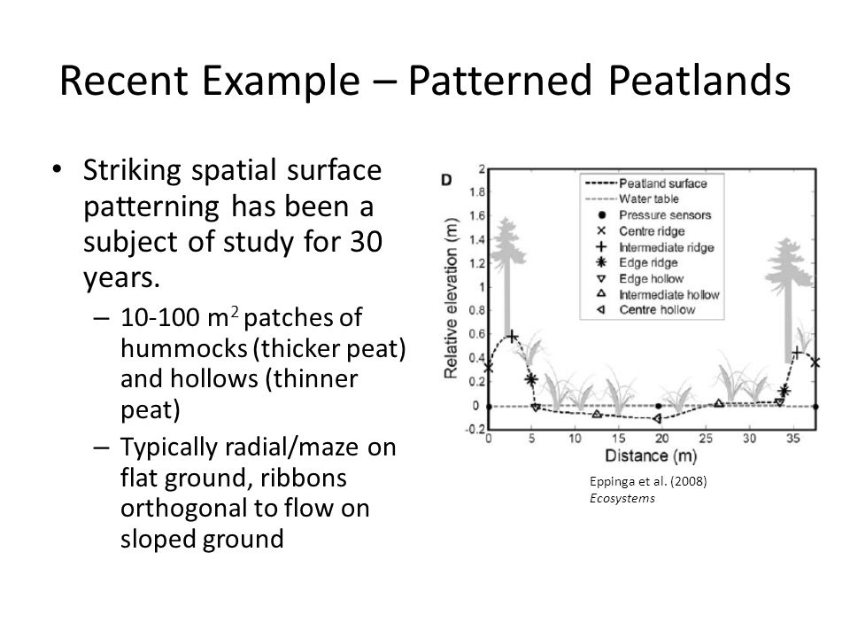 Recent Example – Patterned Peatlands Striking spatial surface patterning has been a subject of study for 30 years.