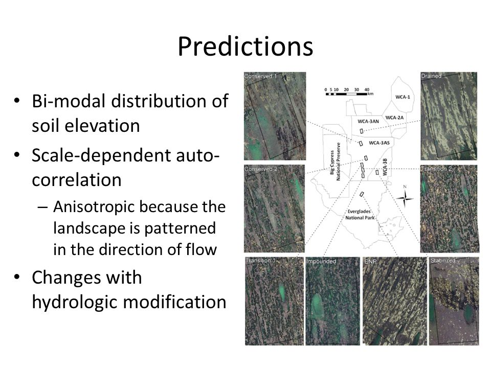 Predictions Bi-modal distribution of soil elevation Scale-dependent auto- correlation – Anisotropic because the landscape is patterned in the direction of flow Changes with hydrologic modification