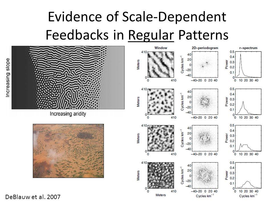 Evidence of Scale-Dependent Feedbacks in Regular Patterns DeBlauw et al. 2007