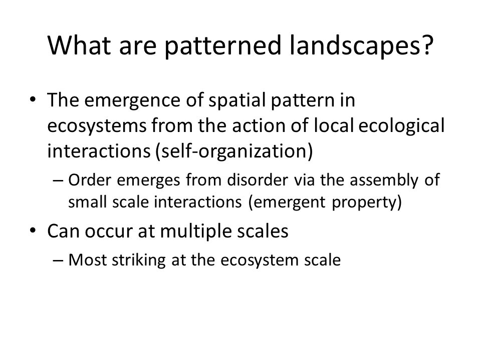 What are patterned landscapes.