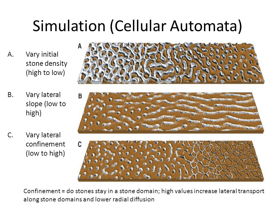 Simulation (Cellular Automata) A.Vary initial stone density (high to low) B.Vary lateral slope (low to high) C.Vary lateral confinement (low to high) Confinement = do stones stay in a stone domain; high values increase lateral transport along stone domains and lower radial diffusion