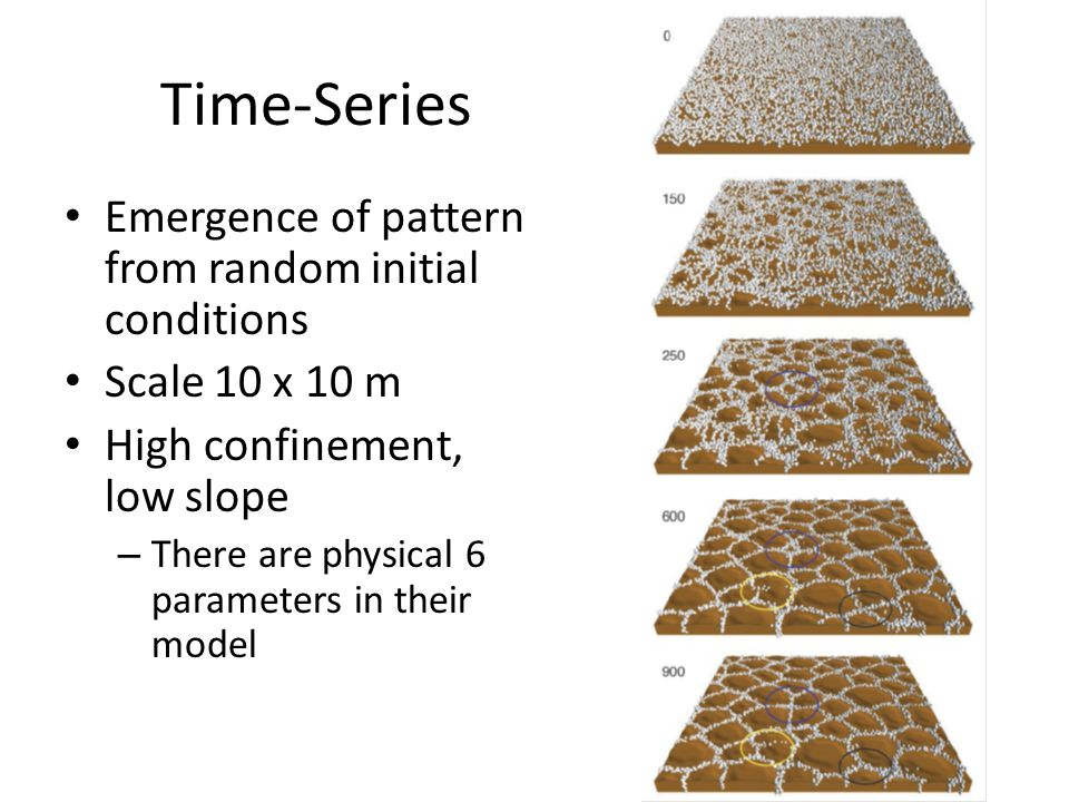 Time-Series Emergence of pattern from random initial conditions Scale 10 x 10 m High confinement, low slope – There are physical 6 parameters in their model
