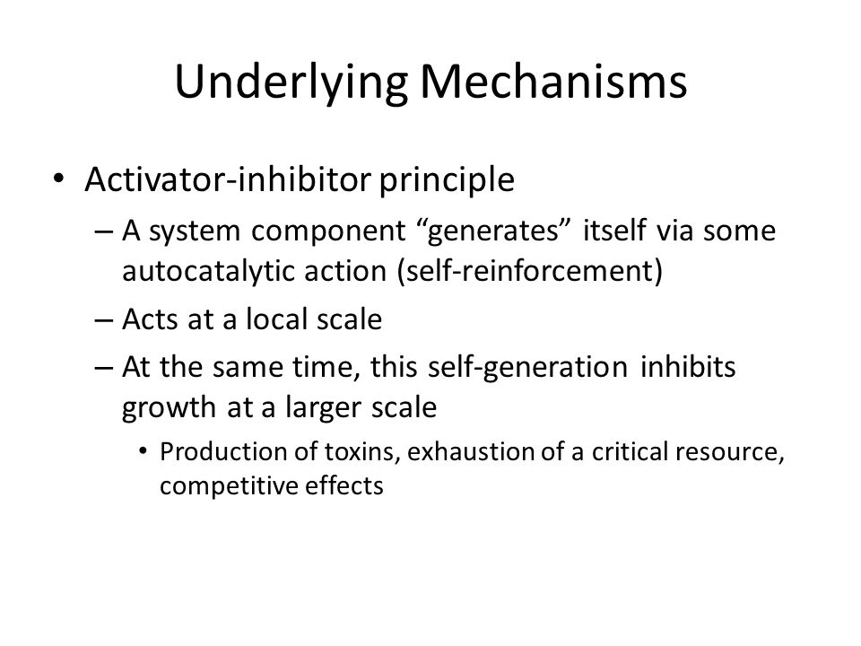Underlying Mechanisms Activator-inhibitor principle – A system component generates itself via some autocatalytic action (self-reinforcement) – Acts at a local scale – At the same time, this self-generation inhibits growth at a larger scale Production of toxins, exhaustion of a critical resource, competitive effects