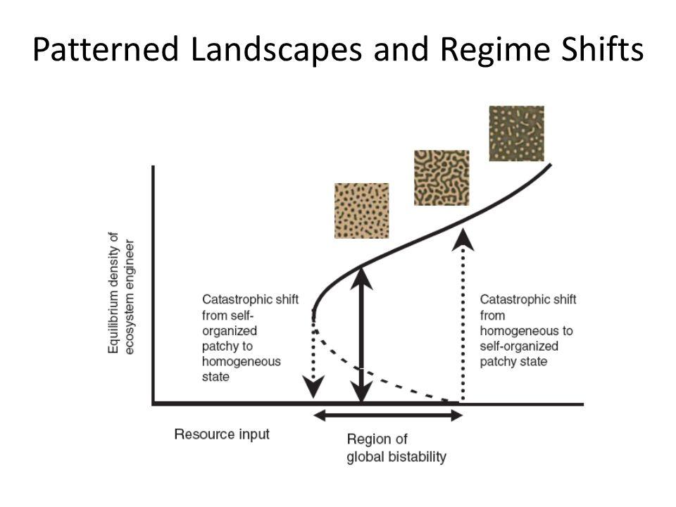 Patterned Landscapes and Regime Shifts Rietkerk et al. (2009) Science
