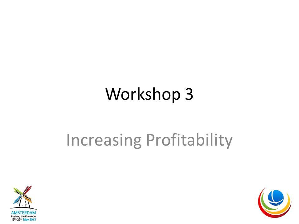 Workshop 3 Increasing Profitability